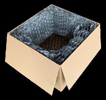 Verpackung - Sichereitskartonage PC V2